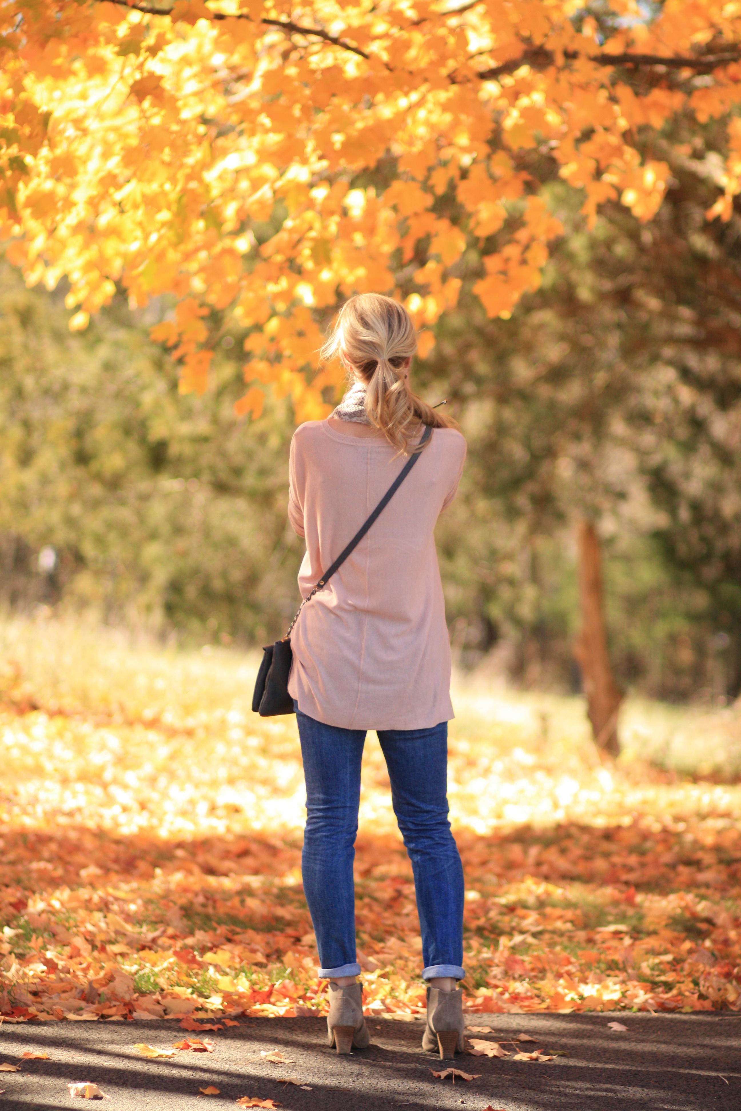 Autumn Pastels Pink Tunic Sweater Snake Print Scarf