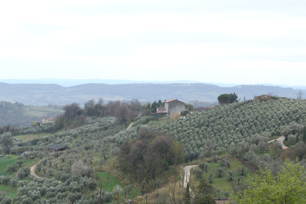 Umbrian countryside, Italy